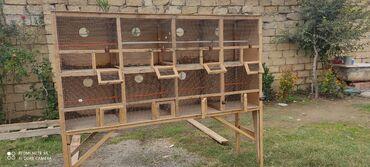 taxta evlerin qiymeti 2020 in Azərbaycan   MALYAR USTALARI: Tutuqusu yuvasi.8 yuvali taxta ve setkadan hazirlanib .qiymeti 150