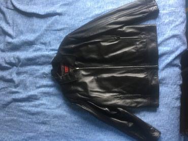 NOVO - Crna kozna jakna, klasicna - Novi Sad