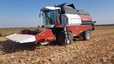 Услуги по уборке кукурузы на зерно