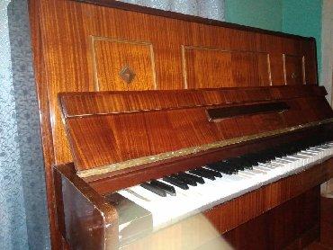rayonlarda ev alqi satqisi - Azərbaycan: Piyano Masallı rayonunda qiyməti razılaşma yolu ilə endirimdə olacaq
