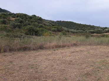 5900sqms land at psathopirgos village by the national road athens to σε Nafpaktia