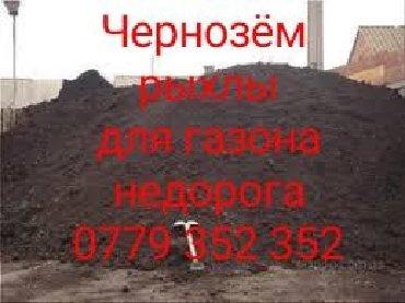Чернозём Чернозём Чернозём для Газона клумб рыхлый