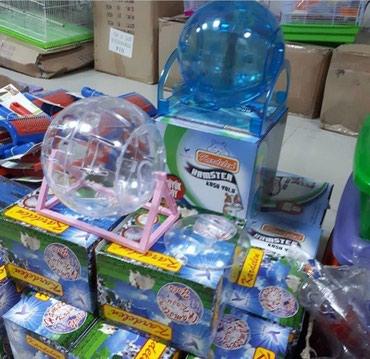 Xırdalan şəhərində Xamyaklar ucun yumru diyirlenmeye oyuncaq.Cehrayi olan normal olcudedi