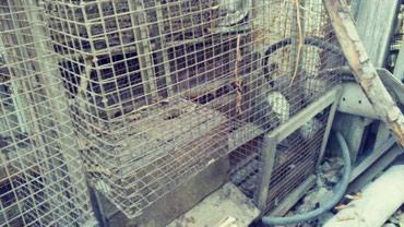 Клетки для выращивания норок в Бишкек