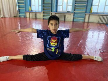 если стерилизовать кошку будет ли течка в Кыргызстан: Гимнастика и акробатика для детей! от 3. 5 до 9 лет! подготовка детей