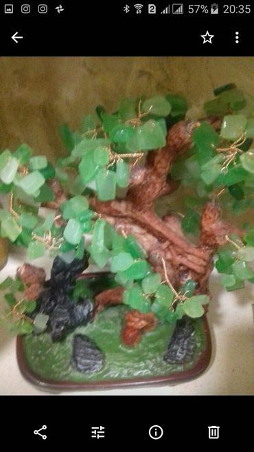 вешалка дерево в Азербайджан: Дерево из натурального нефрита