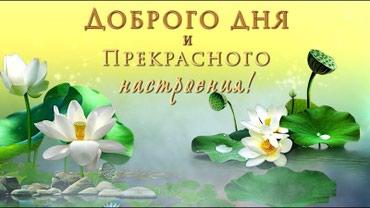 ad-image-51143602