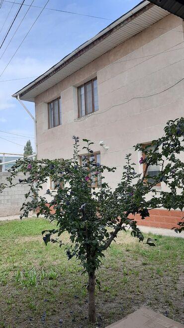 дом аренда долгосрочно in Кыргызстан | ДОЛГОСРОЧНАЯ АРЕНДА ДОМОВ: 200 кв. м, 8 комнат, Гараж, Теплый пол, Бронированные двери