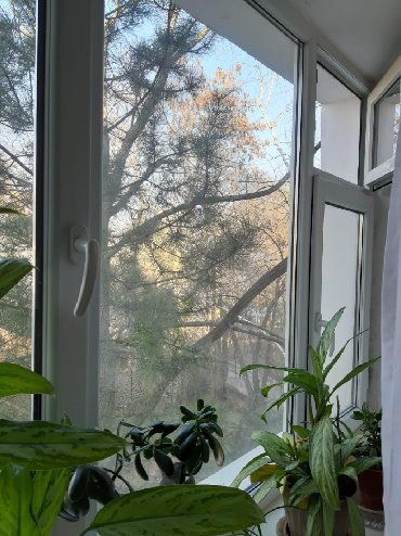 купли продажа авто в Кыргызстан: Индивидуалка, 3 комнаты, 61 кв. м С мебелью, Не сдавалась квартирантам, Животные не проживали