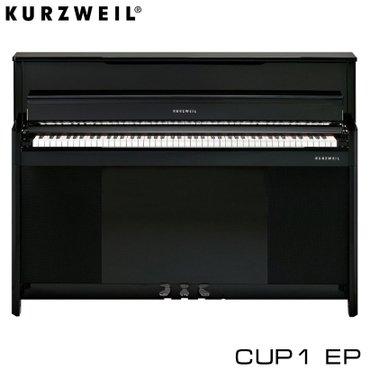 Пианино:Благодаря современному корпусу с медленной закрытой лифтовой
