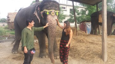 Hotel National Park Is located in sauraha near to city and rapti in Ratnanagar  - photo 7