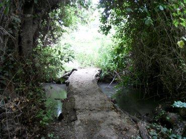 Xaçmaz şəhərində Xacmaz rayonunun tel kendinde 2 ha ozel (kupcali) torpaq sahesi