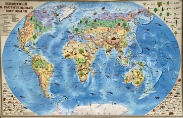 """Карта мира """"МИР ЖИВОТНЫХ"""" большая красивая, ИНТЕРАКТИВНАЯ-Можно"""