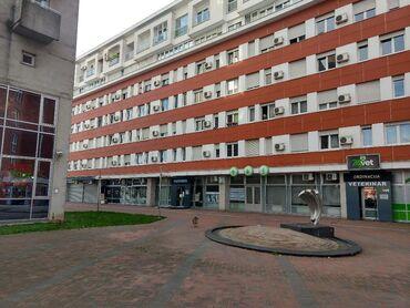 Aleksandra - Srbija: Prodajemo lokal površine 234 m2 u prizemlju stambene zgrade na Bulevar