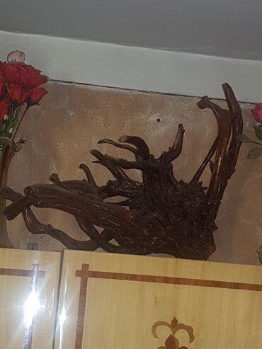 Heykəlciklər - Azərbaycan: Оригинальная подставка. Статуэтка из дерева. Корень. Отлично подойдет