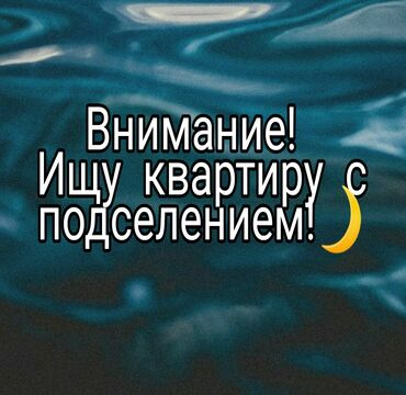 удаленная работа на дому через интернет в Кыргызстан: Всем привет!Ищу квартиру с подселением!Гарантирую своевременную оплату