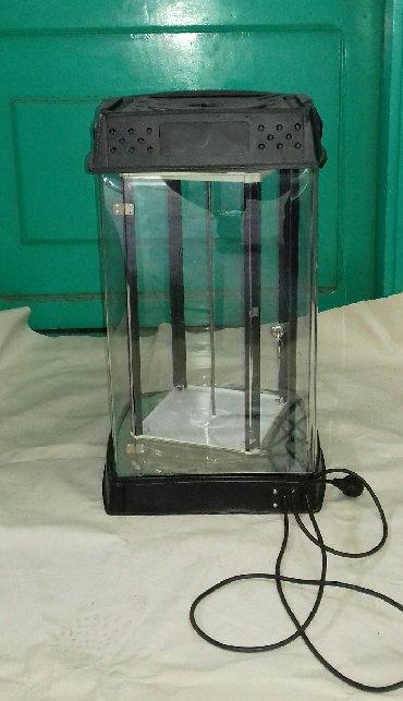 Elektronika - Kula: Polica izložbena. Prodajem prelepu manju vitrinu, unutrasnje postolje