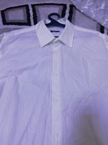 Абсолютно новая, мужская рубашка! в Лебединовка