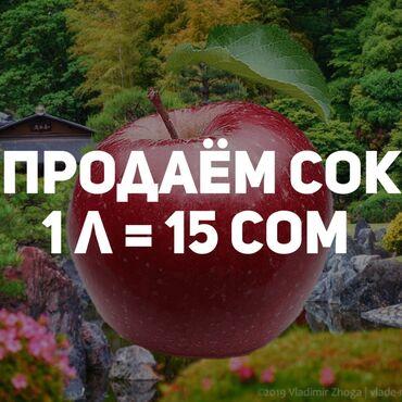 Продаём сок 1 л = 15 сок г. Каракол ул. Кыдыр-Аке 88