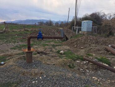 Torpaq - Azərbaycan: Torpaq sahələrinin satışı 200 sot Biznes üçün, Barter mümkündür, Kupça (Çıxarış)