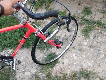 Продаю шоссейная велосипед, производство Германия, состояние отличное