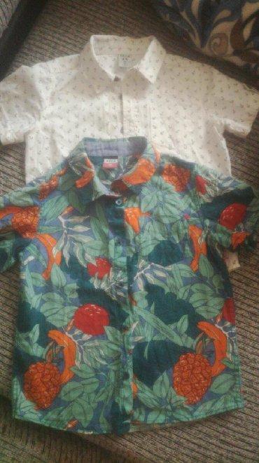 Детские топы и рубашки в Кыргызстан: Рубашки Sela на мальчика 5 -6 лет 100% хлопокв отличном состоянии