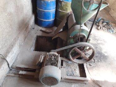 Оборудование для бизнеса в Сокулук: Продаю маслобойку с технологиями.в рабочем, хорошем состоянии. А так