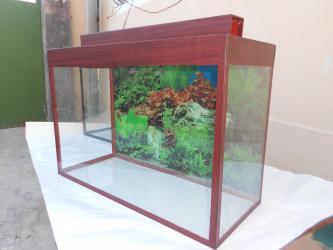 Bakı şəhərində Wekildeki mebel rengde teze akvarium  60 litrelik