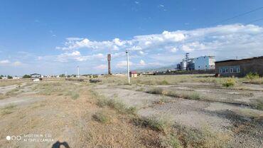 Заводы и фабрики - Кыргызстан: Срочно продаю территорию под производство 305 соток в селе Сокулук со