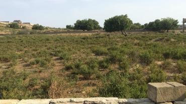 Bakı şəhərində SATILIR: Razin qesebesinde 1.1 hektar torpaq sahesi satilir. Bina ucun