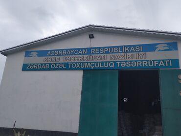 Digər xidmətlər - Azərbaycan: Zərdab Rayon Özəl Toxumçuluq Təsərrüfatında gübrə satışı fəaliyyətə ba