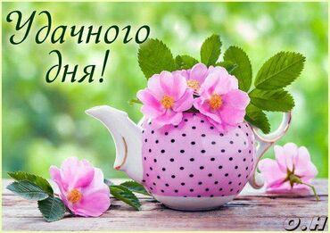 Массаш - Кыргызстан: Массаж расслабляющий для мужчин!Интим не предлагать!!!Работаем с 9.00