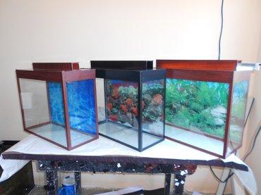 bmw-1-серия-125i-mt - Azərbaycan: Teze akvarium 1 metrelik  bawqalarida var