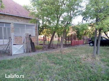 Prodajem kucu u banatskom selu cestereg. 20 ari plac,kuca 180 m2 i - Zrenjanin