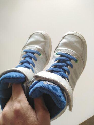Adidas broj 32
