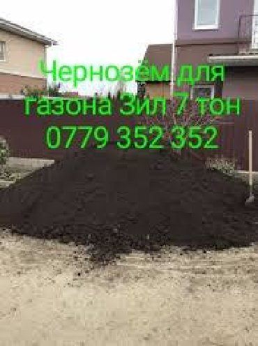 Чернозём для газона клумб рыхлый Без сарника