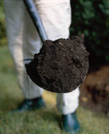 Земля, Чернозём, Чернозем, Перегной, Навоз удобрение почвы. Доставка
