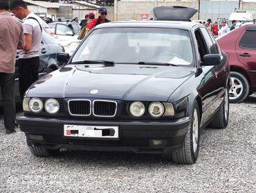 BMW 525 2.5 л. 1994 | 299999 км