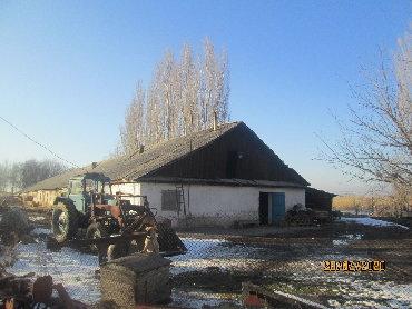 ферму металлическую 7м в Кыргызстан: Продаю ферму, кошару, фазенду