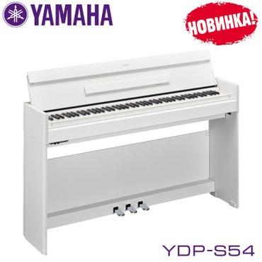 Фортепиано цифровое Yamaha YDP-S54.Серия Yamaha Arius представляет