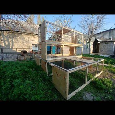 лоток-для-яиц в Кыргызстан: Курятники  Клетка для цыплят, сетка  Курей,  Тоокко Жожого Балапана, т