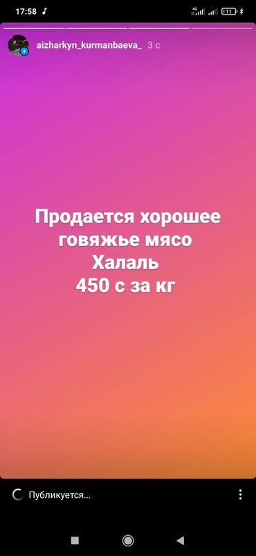 Остальные услуги - Бишкек: Продается говяжье мясо 450 с за кг
