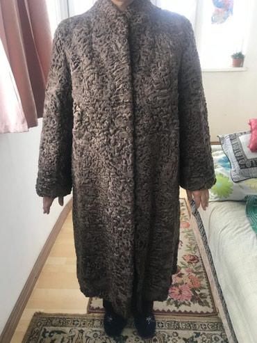 Новоя шуба из каракуля привезли и в Бишкек