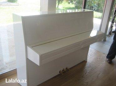 Bakı şəhərində Pianino Weinbach - 3 pedallı avangard model piano - Petrof fabrika