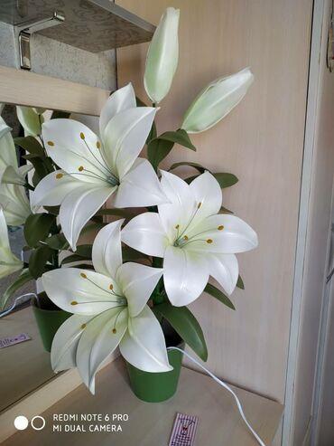 платья на новый год в Кыргызстан: Светильник ночник цветы ! Долговечные ! Красивые! Прекрасный подарок