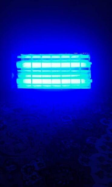 лед лампы бишкек in Кыргызстан | АКСЕССУАРЫ ДЛЯ АВТО: Фотолампа от желтушки фототерапияУльтрафиолетовая лампа при повышенном