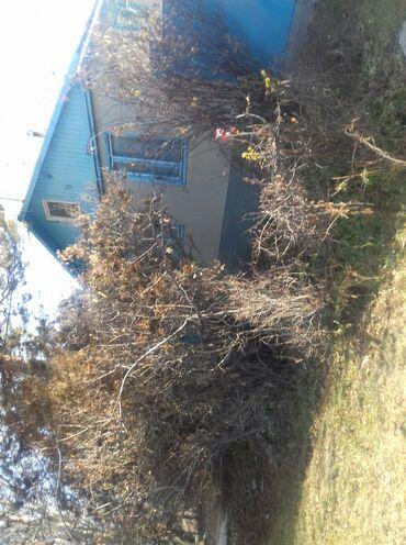продам дом из контейнера в Кыргызстан: Продам Дом 63 кв. м, 5 комнат