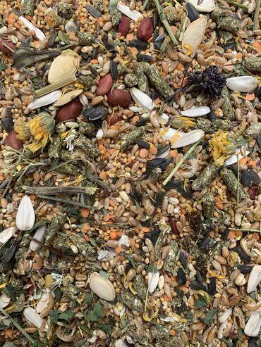 товары из кореи бишкек в Кыргызстан: Полноценный комплексный корм для хомяков   Корм содержит полный ко