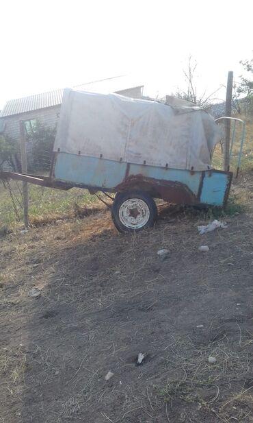 Yük və kənd təsərrüfatı nəqliyyatı - Ağstafa: Yük maşınları