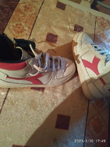 Patike Adidas br.34